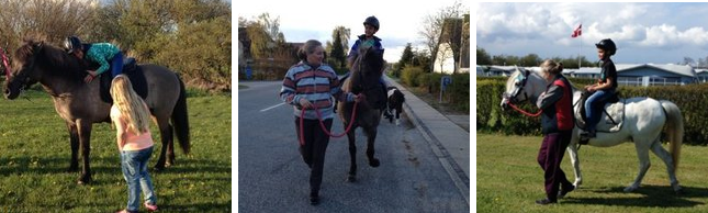 Ponyridning Randers Fjord
