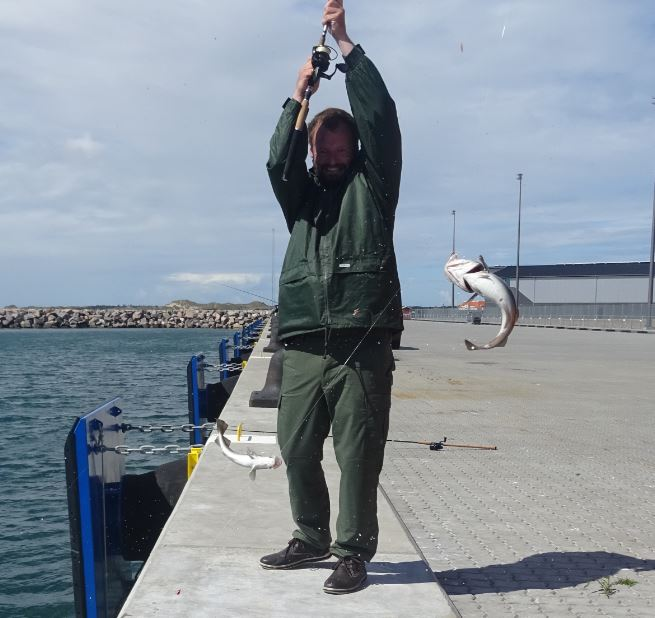 torsk-skagen