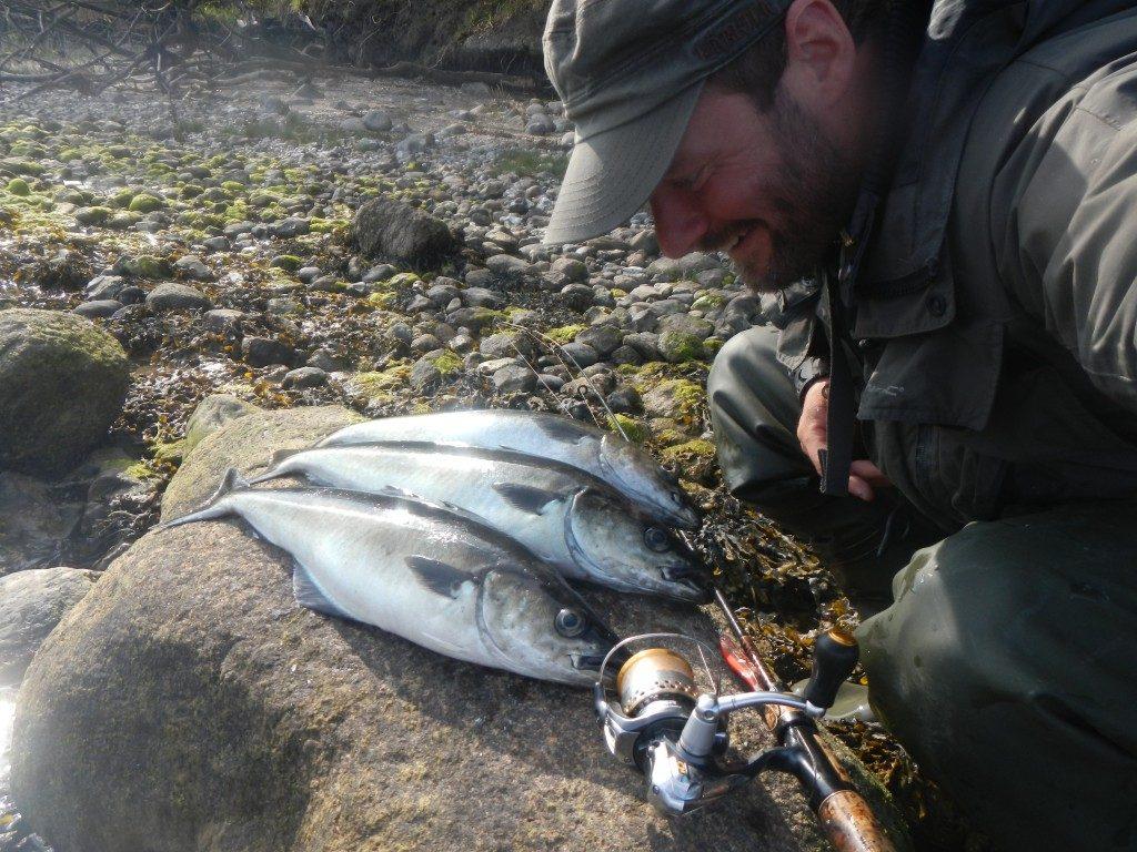 fisk finder krog op match gør online software