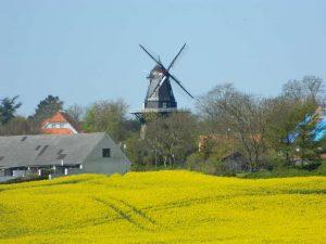 Vestsjælland på jysk - der er slående ligheder når det kommer til naturen.