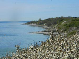 Vestsjælland på jysk skal tolkes sådan, at den vestlige del af Sjælland kan minde om Jylland.