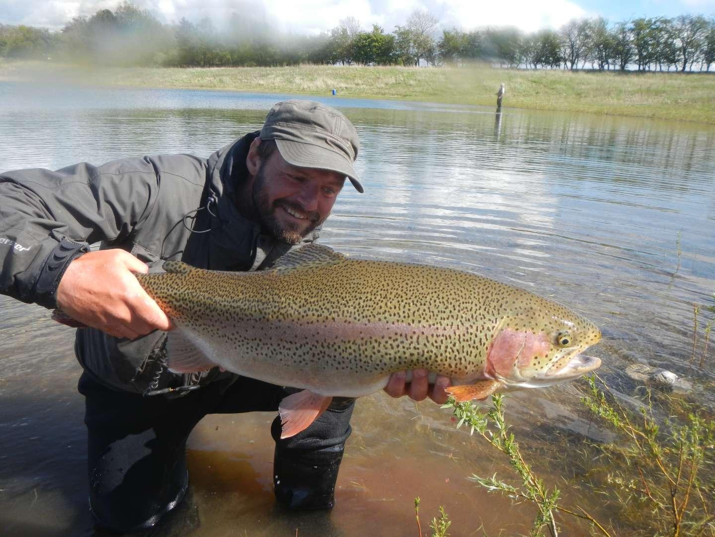 regnbueørred fiskeri