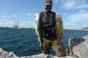 Den nye mole i Frederikshavn byder på spændende lystfiskeri