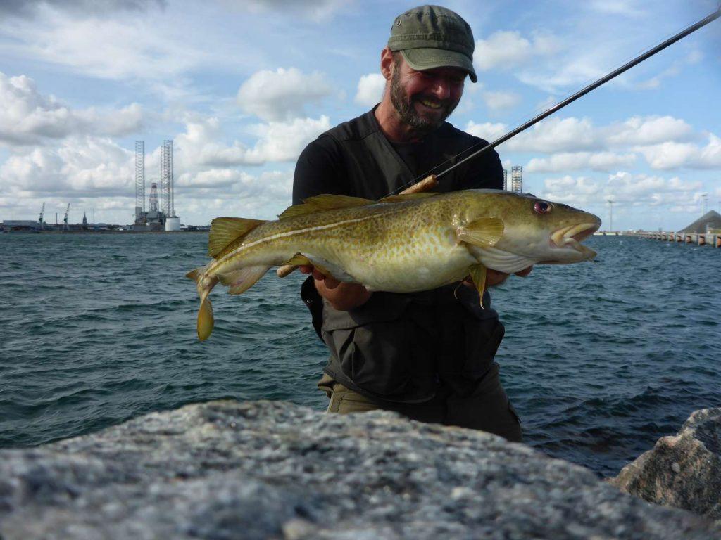 Torskefiskeri i Frederikshavn